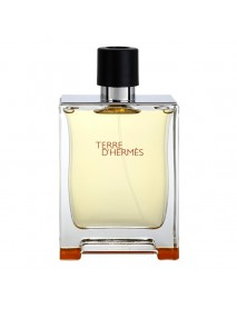 Hermes Terre D'Hermes pánska toaletná voda 100 ml TESTER